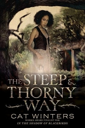 "Book Review: ""The Steep and Thorny Way"" by Cat Winters"